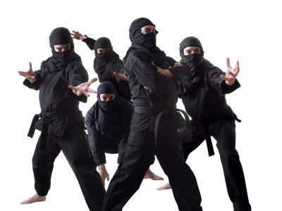wpid-ninja7.jpg